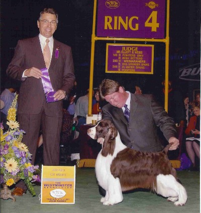 Connor at Westminster Kennel Club